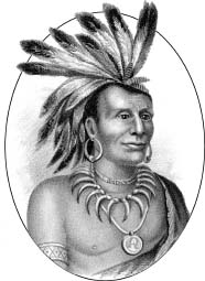 Chief Little Turtle